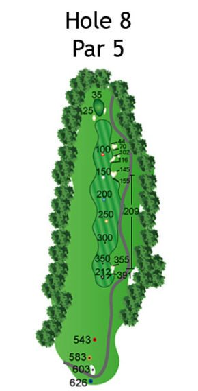 Layout of The Nightmare Hole 8